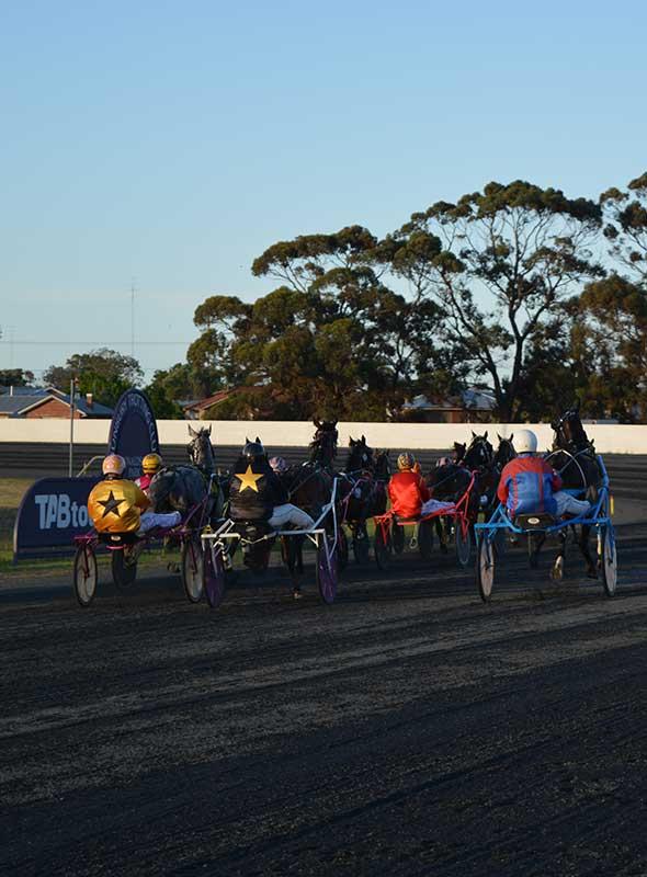 Bunbury Trotting Club Race Dates